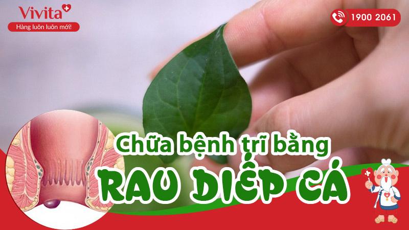 chua-benh-tri-bang-rau-diep-ca