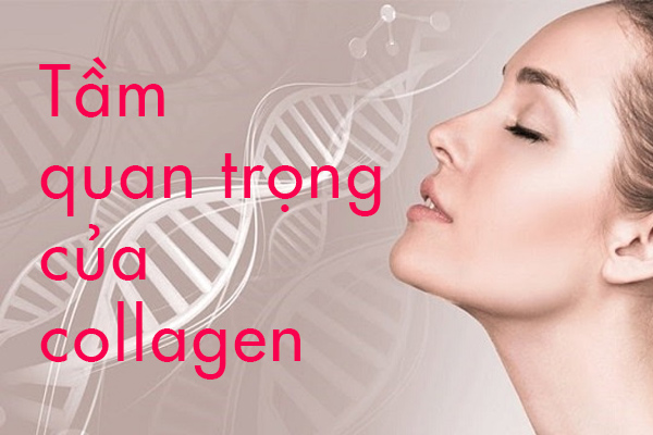 nuoc-uong-dep-da-va-tam-quan-trong-cua-collagen