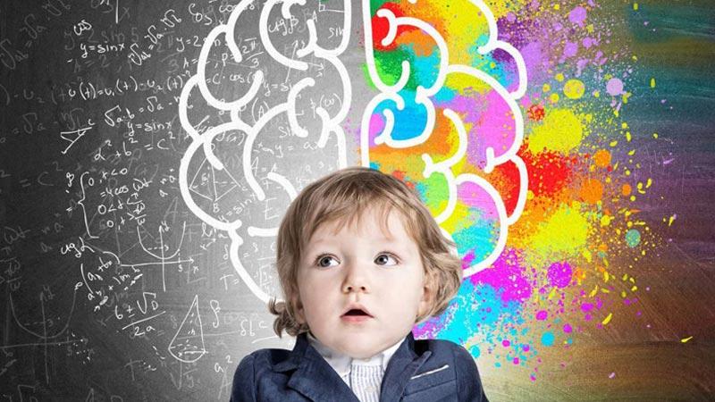 Dầu cá giúp trẻ phát triển nhận thức