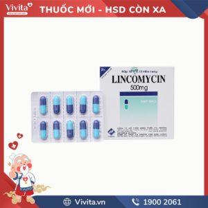 Thuốc kháng sinh trị nhiễm khuẩn Lincomycin 500mg