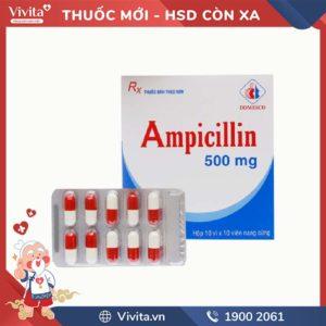 Thuốc kháng sinh trị nhiễm khuẩn Ampicillin 500mg
