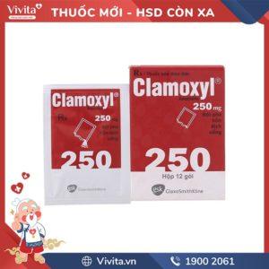 clamoxyl 250mg