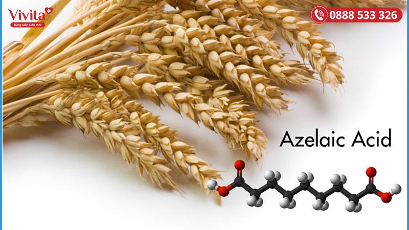 Acid azelaic có nguồn gốc từ ngũ cốc như lúa mạch, lúa mì